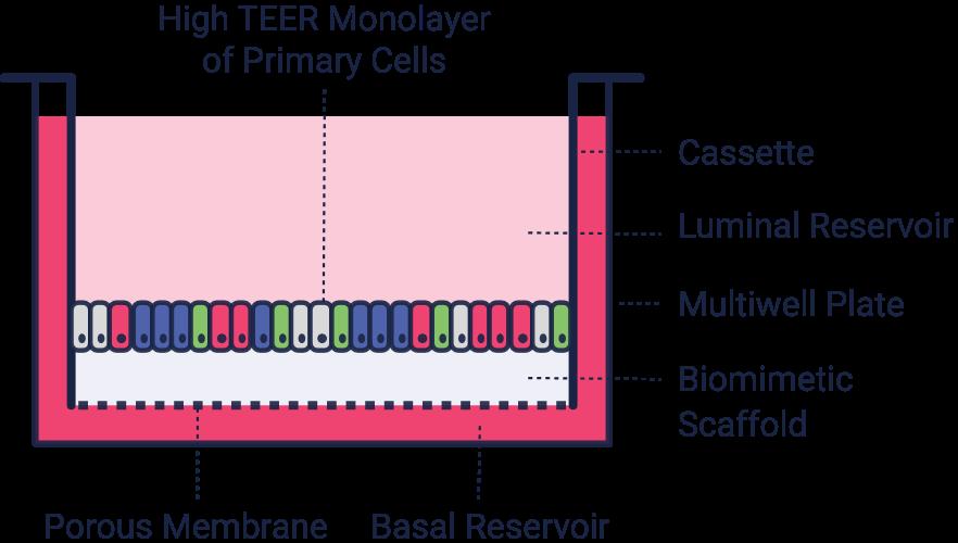 platform_diagram1@2x